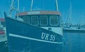 Maquinaria Industria de Pescado y Conservera